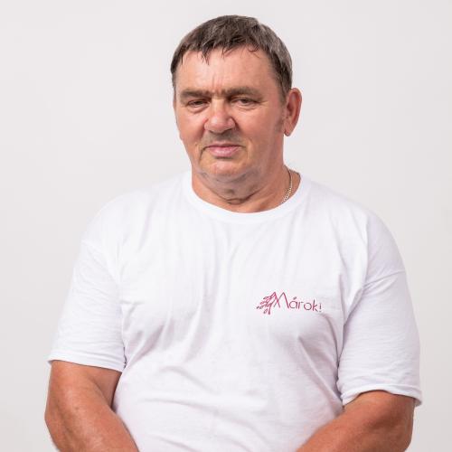 Tóth László
